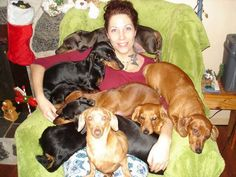 Mum's getting some good lovin' ...doxie style! Lol an intervention wouldn't help at this stage.