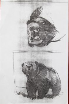 Cartoon Drawings, Animal Drawings, Drawing Sketches, Drawing Style, Drawing Tips, Teddy Bear Sketch, Character Drawing, Character Design, Bear Drawing