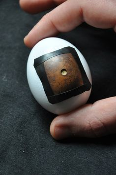 "https://flic.kr/p/9BcT3F   pinhegg   egg pinhole camera  <a href=""http://www.lomography.com/magazine/lifestyle/2011/04/23/the-pinhegg-my-journey-to-build-an-egg-pinhole-camera"" rel=""nofollow"">The Pinhegg – My Journey To Build An Egg Pinhole Camera </a>  <a href=""http://www.francescocapponi.it"" rel=""nofollow"">www.francescocapponi.it</a>"