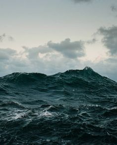 Wave follows wave to break on the shore, On each wave is a star, a person, a bird, Dreams, reality, death - on wave after wave. -Arseny Tarkovsky