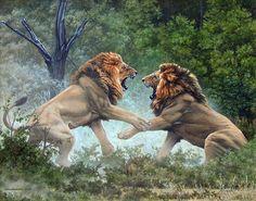 Lion – Page 2 – Johan Hoekstra Wildlife Art Collection Wildlife Paintings, Wildlife Art, Animal Paintings, Animal Drawings, Big Cats Art, Cat Art, Wild Life, Beautiful Cats, Animals Beautiful