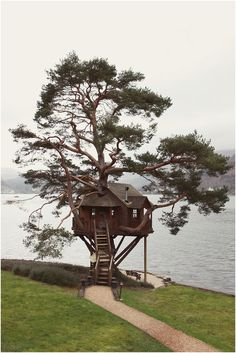 Scottish tree/lake house