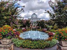 Savor a summertime stroll around beautiful Lewis Ginger Botanical Garden. Area Restaurants, Botanical Gardens, Summertime, Patio, Explore, Outdoor Decor, Nature, Beautiful, Instagram