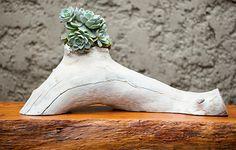 O paisagista Edu Bianco, da Flamboyant Paisagismo, plantou uma muda de echeveria na escultura feita com um pedaço de tronco de grápia pela designer Monica Cintra