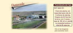 MAD573 Fuentidueña de Tajo. Madrid  Vivero forestal en venta http://www.lancoisdoval.es/empresas-en-venta.html