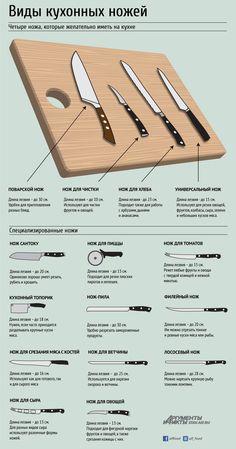 Четыре ножа, которые обязательно должны быть на кухне. Инфографика | Бытовая техника | Кухня | Аргументы и Факты
