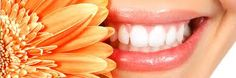 Natural Dental Care Tips. Going to the dentist is not cheap. It is therefore a good idea to prevent dental problems as much as we can before they appear. Here you will find natural dental care tips that will help you to maintain a good oral hygiene and will protect your teeth.