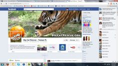 See examples of great nonprofit facebook timelines, including this one from GFAS Accredited Big Cat Rescue.