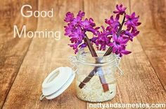 Good morning. Make it a great one. www.nettyandsamestest.com