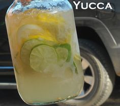 ~YUCCA~ WARNING: Not for children! Refreshing Tequila Drink