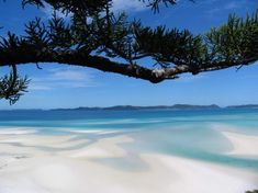"Whitehaven Beach, Australia. @Mandi Caputo I'm moving to Australia so I can play with sharks and my kids can run around yelling ""throw anotha shrimp on da baaarbie, mate!"""