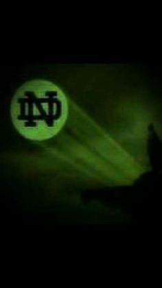 Whoo ranked in pack ten right now Notre Dame Campus, Notre Dame Logo, Go Irish, Irish Pride, Irish Art, Notre Dame Wallpaper, Noter Dame, Lou Holtz, Football Signs