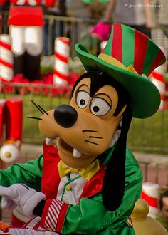 Goofy all dressed up for the Christmas parade.