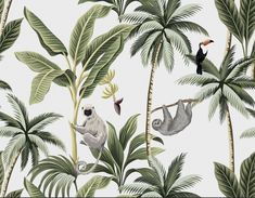 Find Tropical Vintage Animals Toucan Palm Trees stock images in HD and millions of other royalty-free stock photos, illustrations and vectors in the Shutterstock collection. Jungle Wallpaper, Plant Wallpaper, Wall Wallpaper, Images Vintage, Photo Vintage, Vintage Photographs, Motif Jungle, Wall Murals, Wall Art