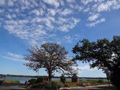 White Bear Lake, Minnesota Park Rapids, Prior Lake, Brooklyn Park, Eden Prairie, White Bear Lake, Landscaping Jobs, Minnesota, The Neighbourhood, Places To Visit