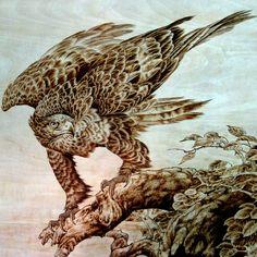 wood burning art eagle