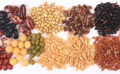 Increased food grain production to boost exports