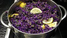 Mátový sirup na to nejlepší mojito – Le Monde Fleuri Mojito, Easy Cooking, Cooking Tips, Cooking Recipes, Vegetarian Recipes Easy, Healthy Salad Recipes, Natural Medicine, Kraut, Food To Make