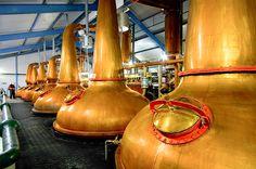 The Making of Laphroaig Whisky on Behance