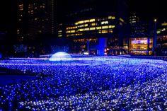 「ミッドタウン・クリスマス 2016」東京・六本木で- 幻想的な青いイルミネーションで宇宙空間を再現 写真6