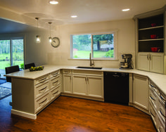 Delicate silverplate grey makes thiks kitchen look roomy and elegant.