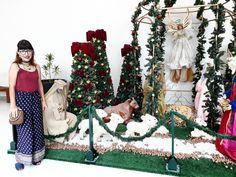 Look do dia na decoração de Natal como todo ano.