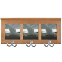 Geyser in Yellowstone Park Coatrack