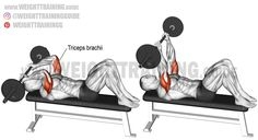 Barbell skull crusher exercise guide and video Fitness Gym, Muscle Fitness, Corps Fitness, Weight Training Workouts, Gym Workouts, Training Exercises, Skull Crusher Exercise, Bodybuilder, Bi And Tri Workout