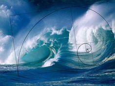 Daughter of Poseidon (Percy Jackson Fan Fiction) No Wave, Poseidon Percy Jackson, Dream Water, Tsunami Waves, Daughter Of Poseidon, California Coast, Horse Art, Ocean Waves, Amazing Nature