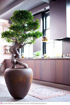 Woontrends 2015: Eco Luxe. Het interieur ademt rust uit. Een luxueuze omgeving met kwalitatieve natuurlijke materialen. #woontrends #interieur