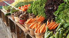 South Haven Farm Market at the Huron Street Pavilion! Every Saturday (8am-2pm) May through October. Wednesdays & Saturdays (8am-2pm) June-September.