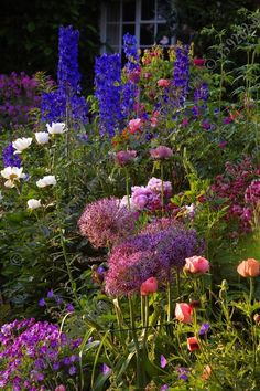 A friends beautiful herbaceous border Country Cottage Garden, Cottage Garden Design, Cottage Garden Plants, Love Garden, Garden Planters, Dream Garden, Herbaceous Border, Garden Borders, Back Gardens