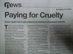 Shame on UCONN for Animal Cruelty.....Remember you can Judge a Nation on how we treat our furry/feathered cousins!