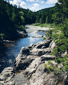 19 Hikes In New Brunswick That Will Get You Excited For Summer - Narcity