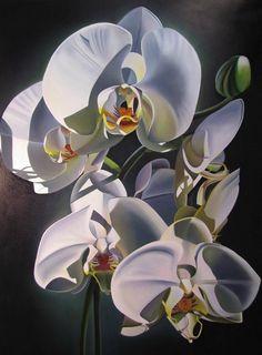 dyana hesson art   Dyana Hesson's Paintings