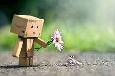 Amazon Box Cute Wallpapers Man Friendship Wallpaper Danbo Images Pictures Hd