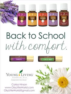 Back to School with Comfort ~ a blog series focused on using Young Living essential oils and products to support the back to school season!