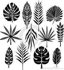 Afbeeldingsresultaat voor tropische bladeren
