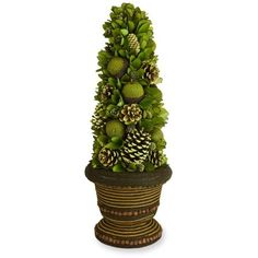 Sheas Wildflower Company Green 25-In. Pine Cone And Fruit Topiary ($70) ❤ liked on Polyvore featuring home, home decor, green, christmas home decor, green home decor, pine cone home decor, fruit home decor and green home accessories