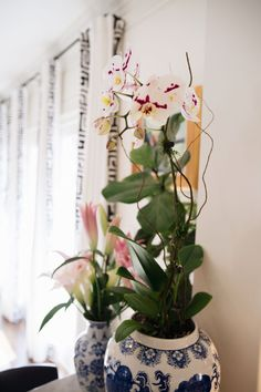 Hobby Lobby Flowers, Orchid Planters, Orchid Arrangements, Large Planters, White Orchids, Cut Flowers, Craft Stores, Roots, Bubbles