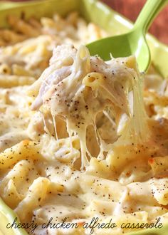 Cheesy Chicken Alfredo Casserole - a delicious and simple casserole version of the dish every family loves! { lilluna.com } Pasta, chicken, lots of cheese, and yummy seasonings make this dish a hit!