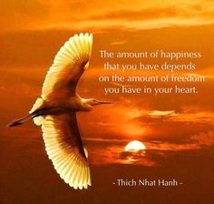 """""""The amount of happiness that you have depends on the amount of freedom you have in your heart.""""   Thich Nhat Hanh"""