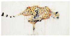 Cheetah by Dave White