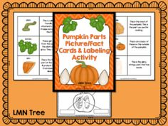 Pumpkin Fact Cards and Labeling Activity Packet - Classroom Freebies