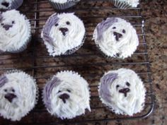 Pictures of Old English Sheepdog Dog Breed Dog Cupcakes, Different Dogs, Old English Sheepdog, Dog Owners, Cool Things To Make, Yummy Treats, Dog Breeds, Cake Decorating, Baking