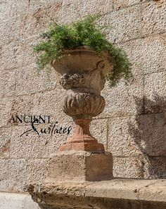 Stone Planters, Organic Beauty, Urn, Fountain, Exterior, Antiques, Outdoor Decor, Antiquities, Antique