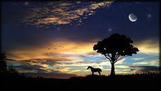 Fonds d'écran Nature Couchers et levers de Soleil Lever de soleil dans l'Hérault coucher aube aurore crépuscule