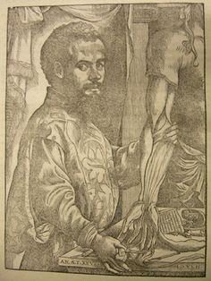 Portrait d'André Vésale