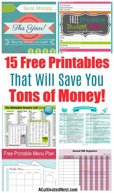 finance printables 15 Free Printables to Save You Money- These 15 free printables will save you money and keep your financial life organized. Theyre a must for any budget binder! Budget Binder, Monthly Budget, Budget Planner, Happy Planner, Monthly Expenses, Budget Book, Dave Ramsey, Ways To Save Money, Money Saving Tips