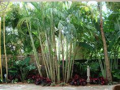 Residential Landscape Photo